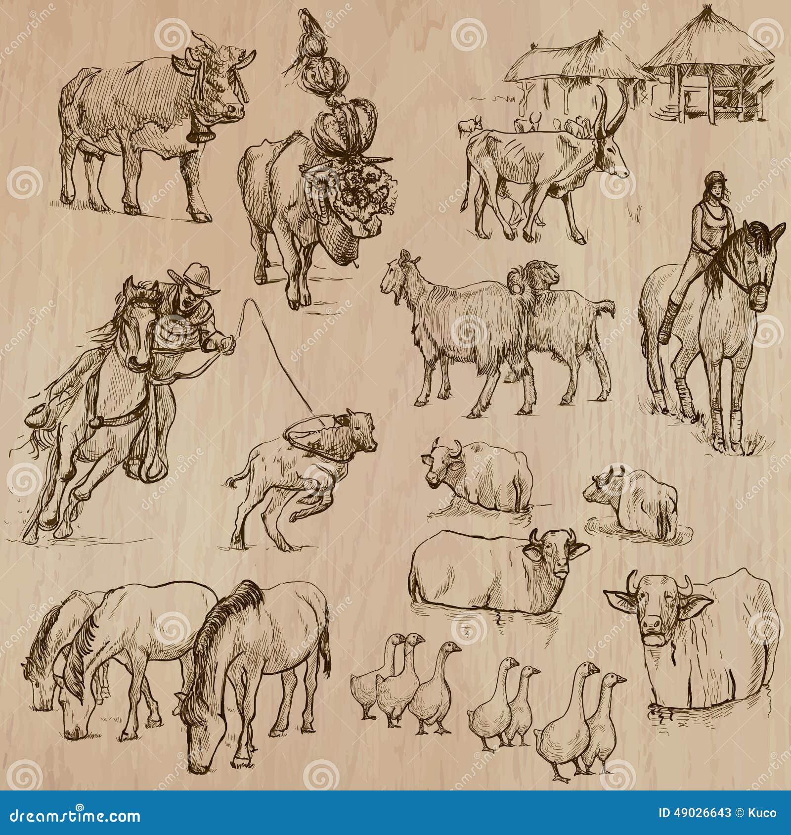 Farm animals. Hand drawn vector pack.