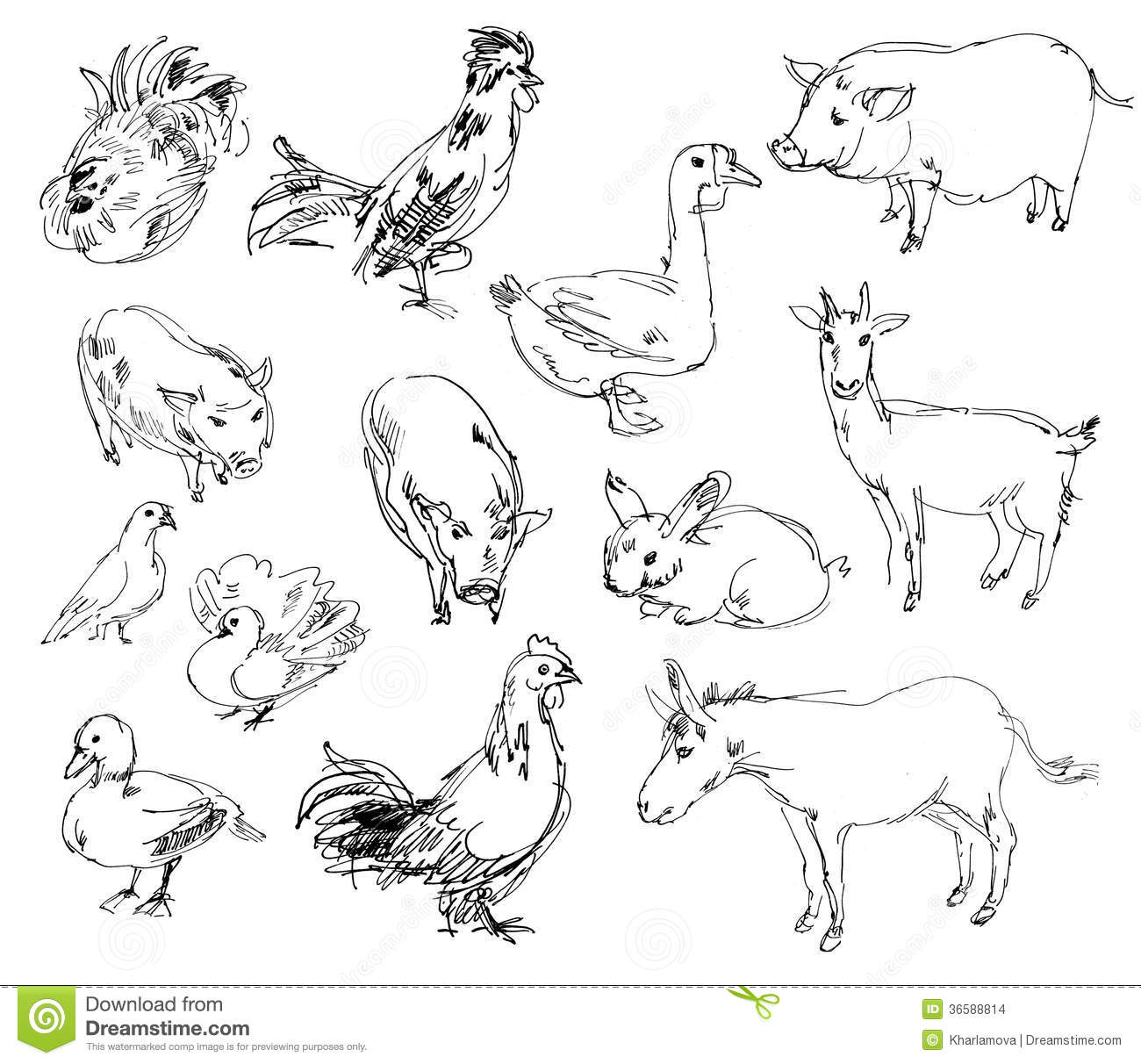 Animal Clip Art Hit Toon together with 2 likewise Search furthermore Stock Images Farm Animals Set Hand Drawn Image36588814 together with Coloring Pages Graffiti. on safari cartoon icons