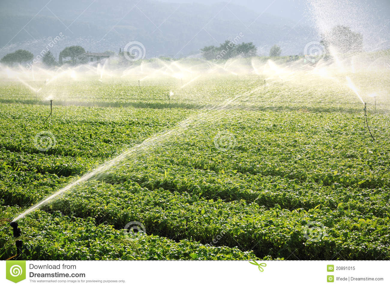 Farm Background Irrigation System Stock Image Image Of
