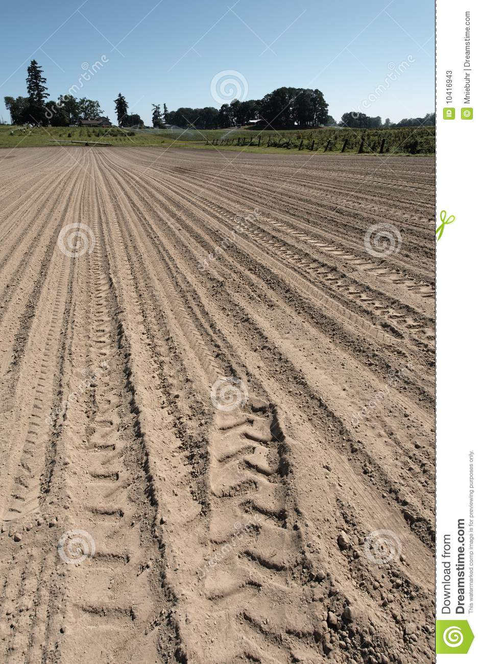 Farm Crop Field With Tracks Prepared For Planting Stock
