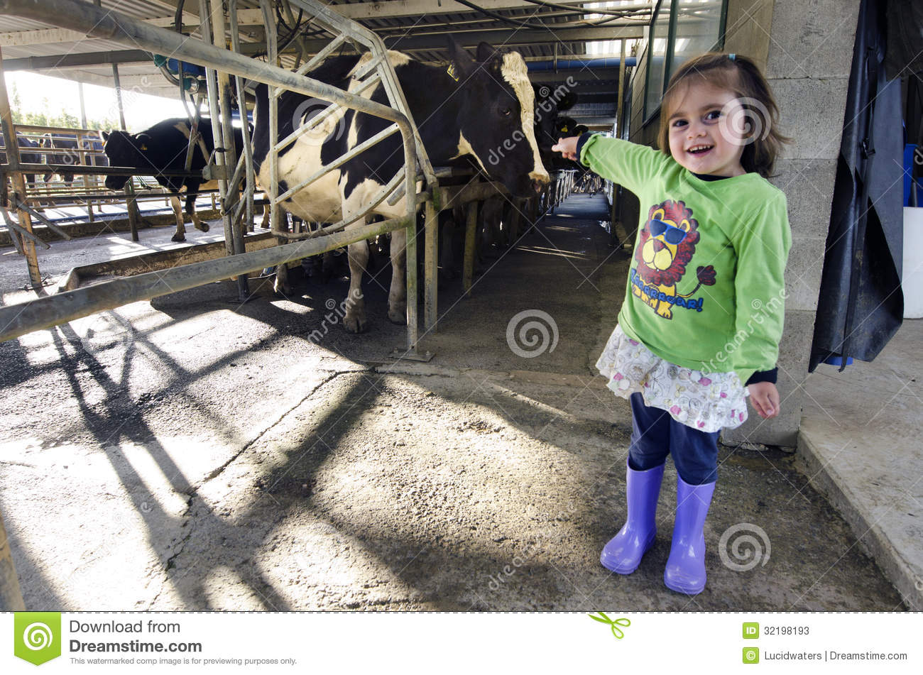 image Dairy farming part 4 of 4