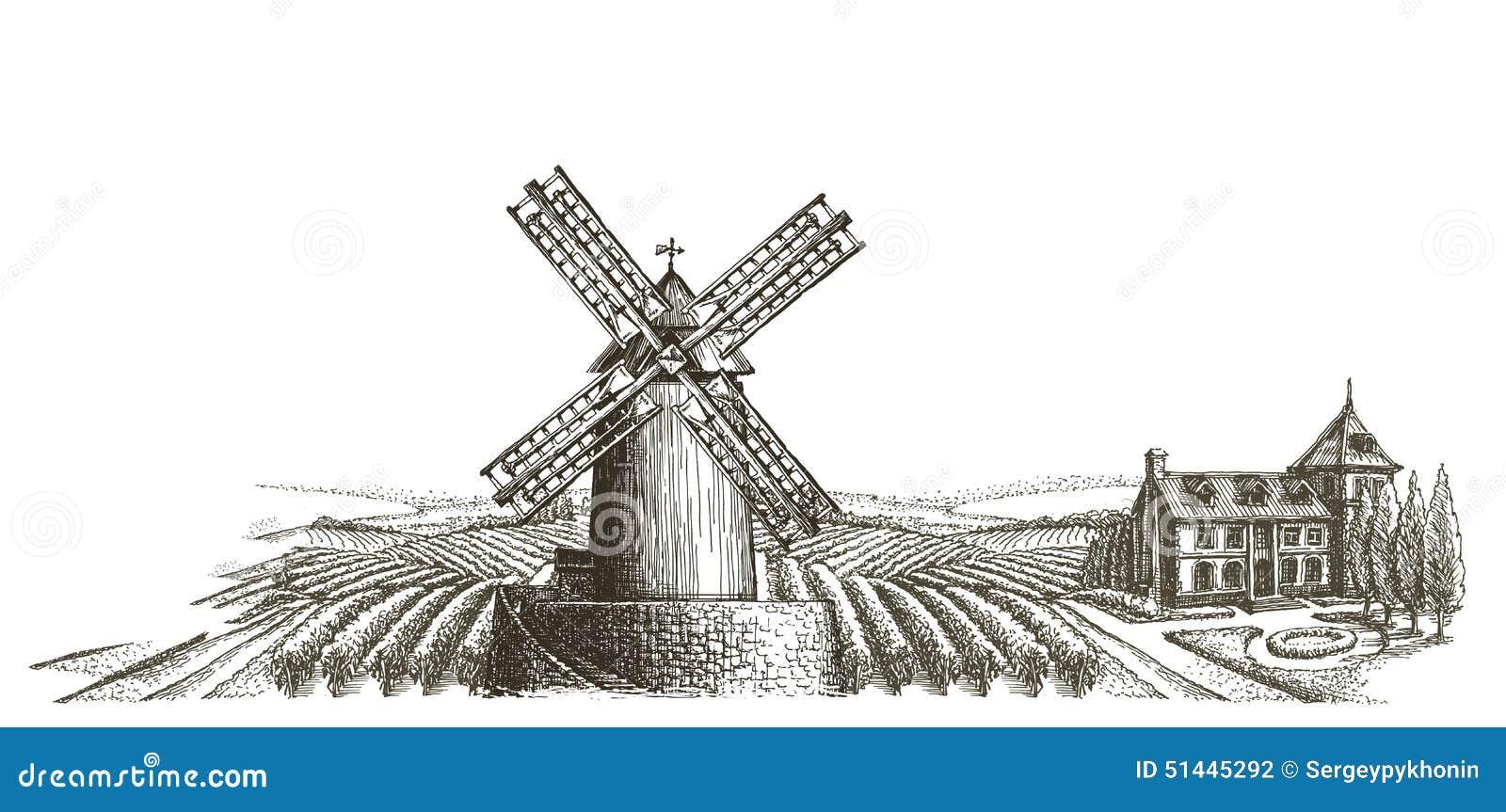 Farm Harvest On A White Background Sketch