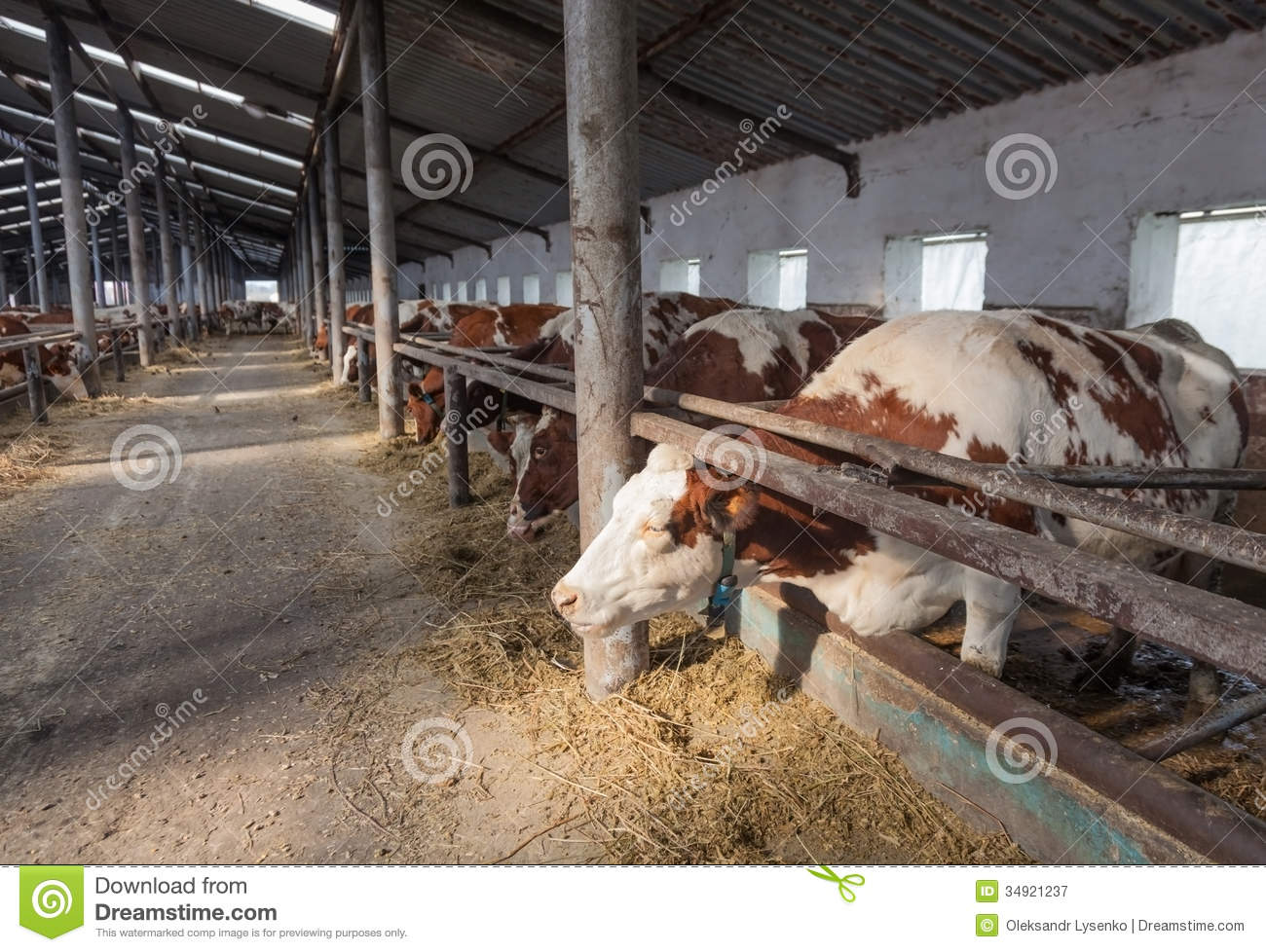 Farm From The Inside