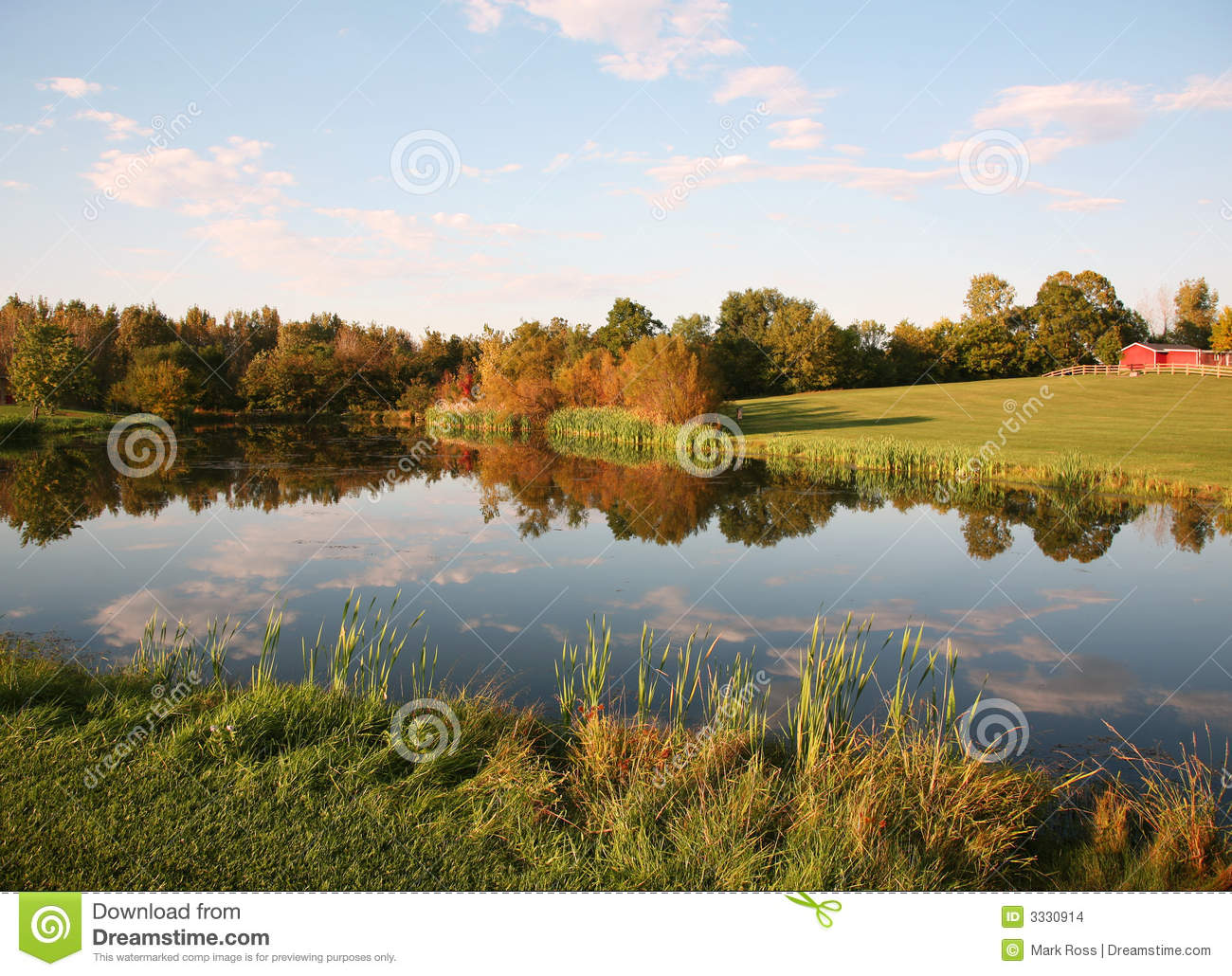 Farm Pond Reflections Stock Images Image 3330914