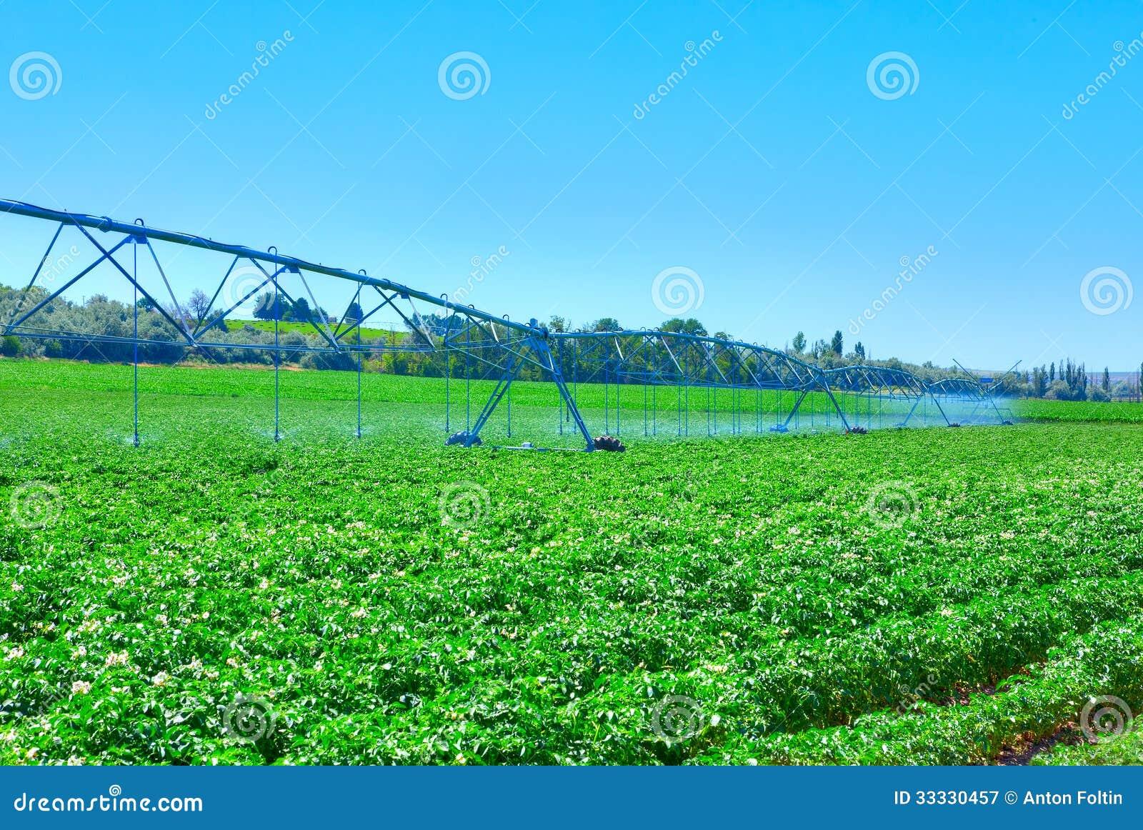 Farm Royalty Free Stock Photography  Image 33330457