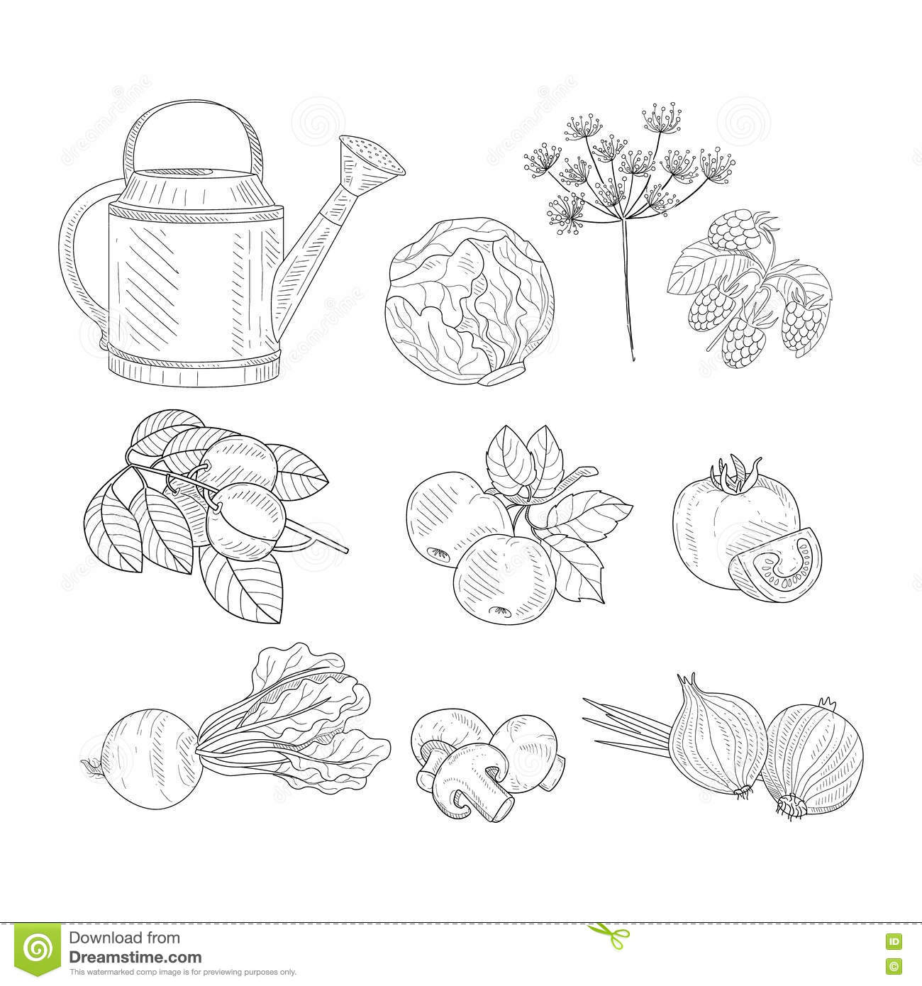 Farm Product Clipart Elements Hand Drawn Realistic Sketch Stock ... for Simple Farm Sketch  570bof