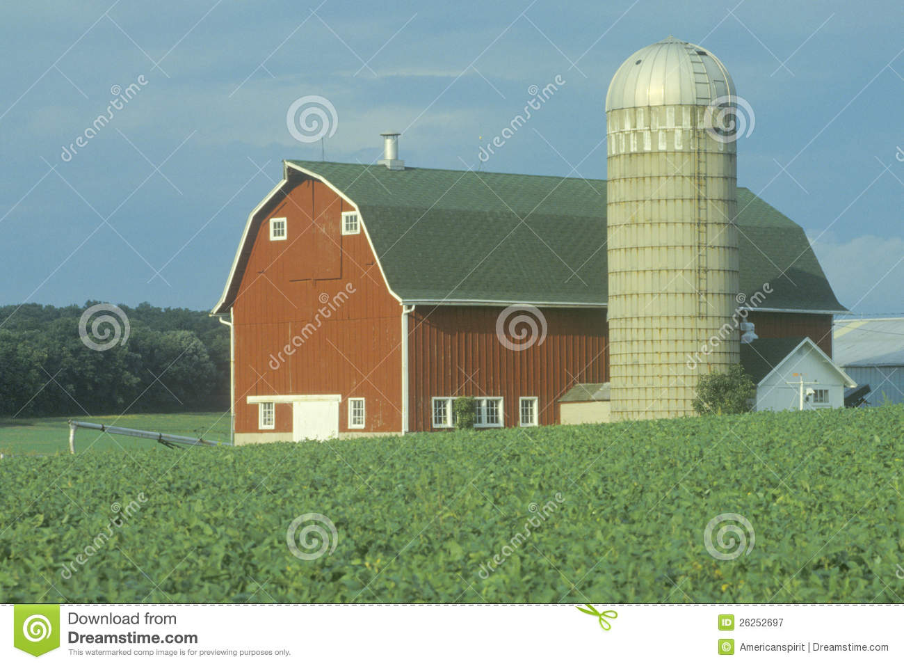 farm with red barn and grain silo royalty free stock