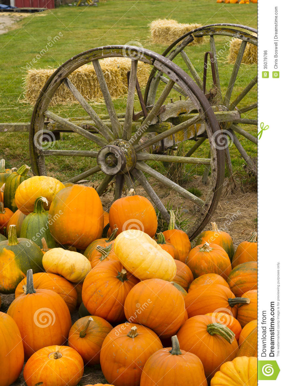 Farm Scene Old Wagon Vegetable Pile Autumn Pumpkins October Pumpkin Ready Purchase Local further Surreal Photomanipulation as well Disneyland Halloween Wallpaper besides How To Paint A Fall Tree Feature further P. on fall halloween scene