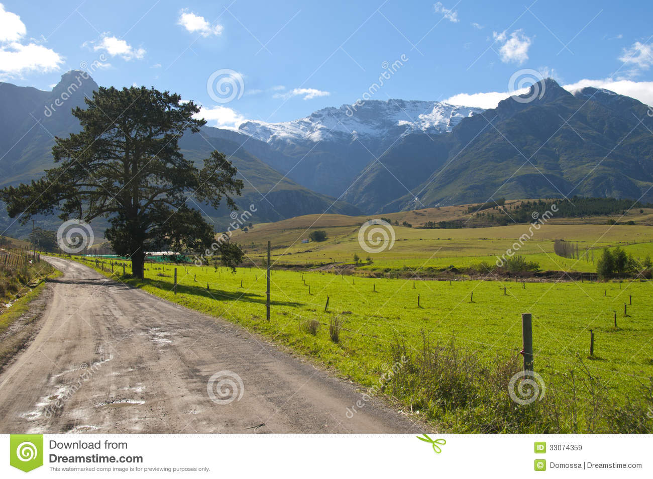 farm scene in the overberg south africa stock image image of