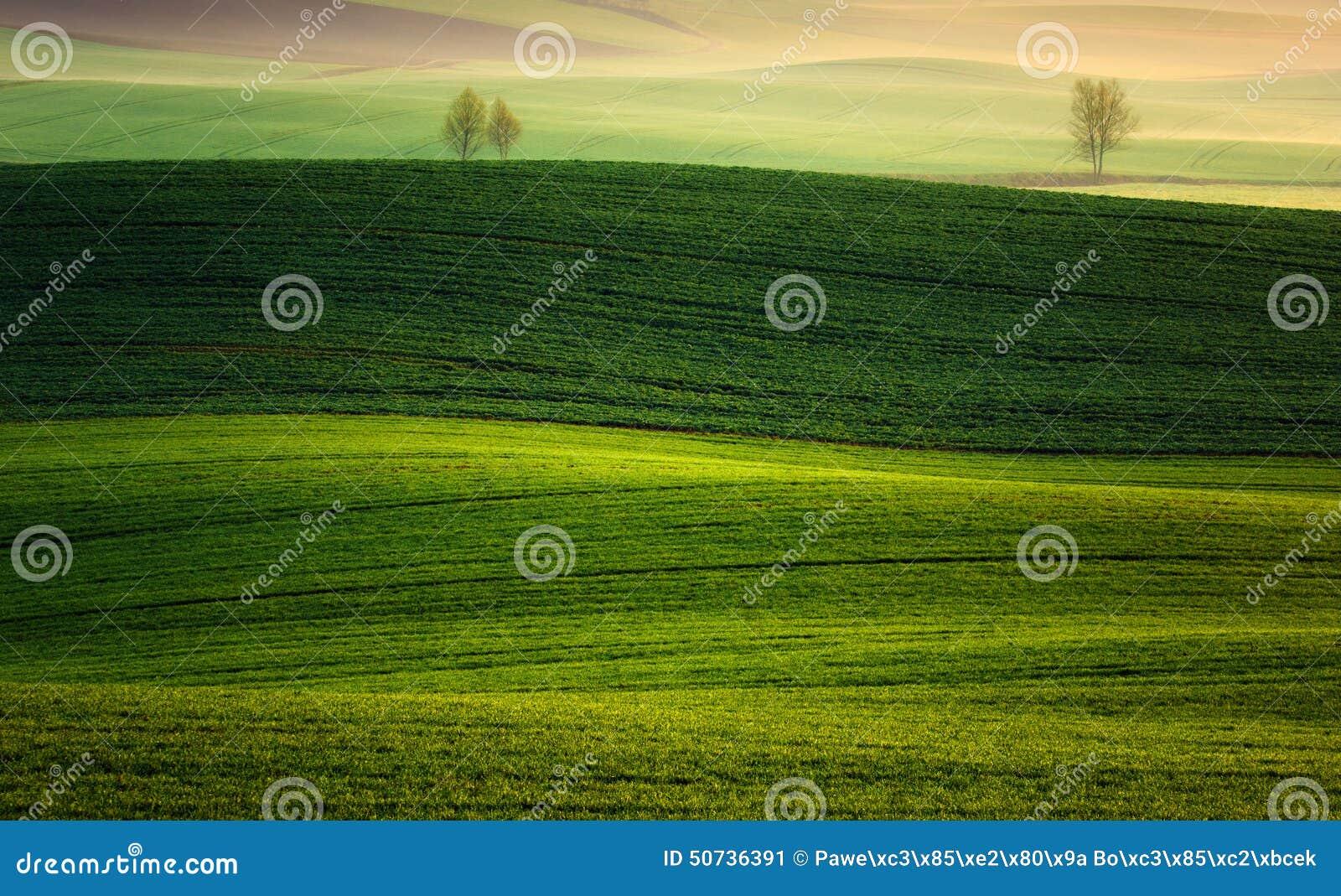 Farm in the spring of rising sun.