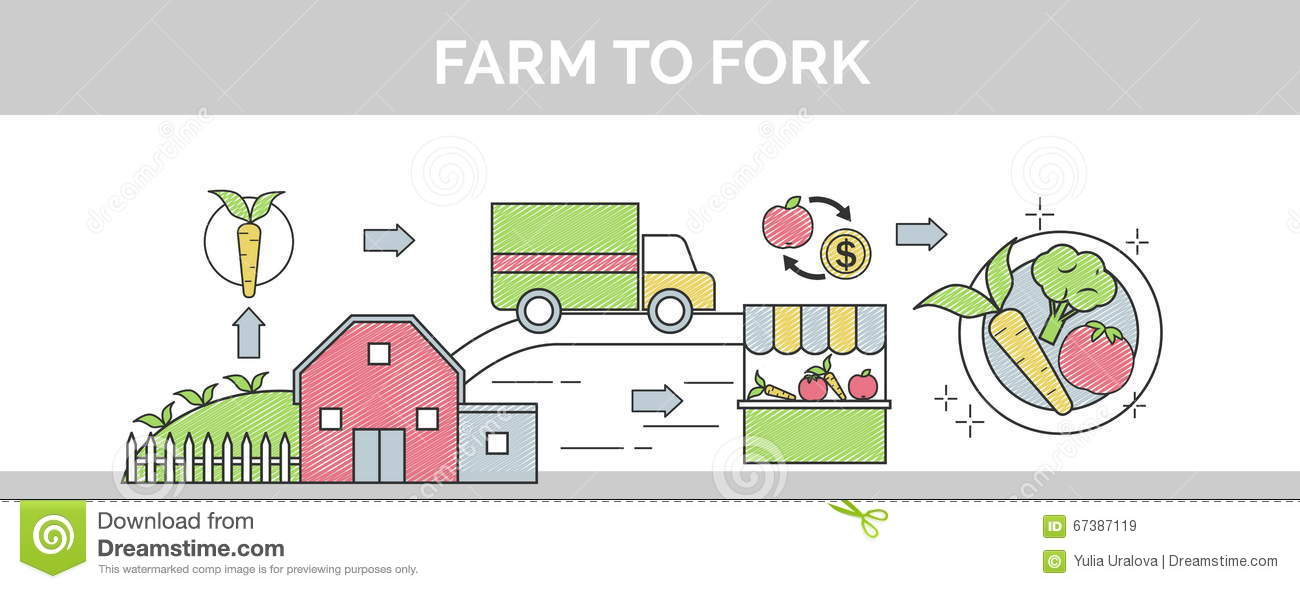 From Farm To Fork Flat Vector Thin Line Scribble Header
