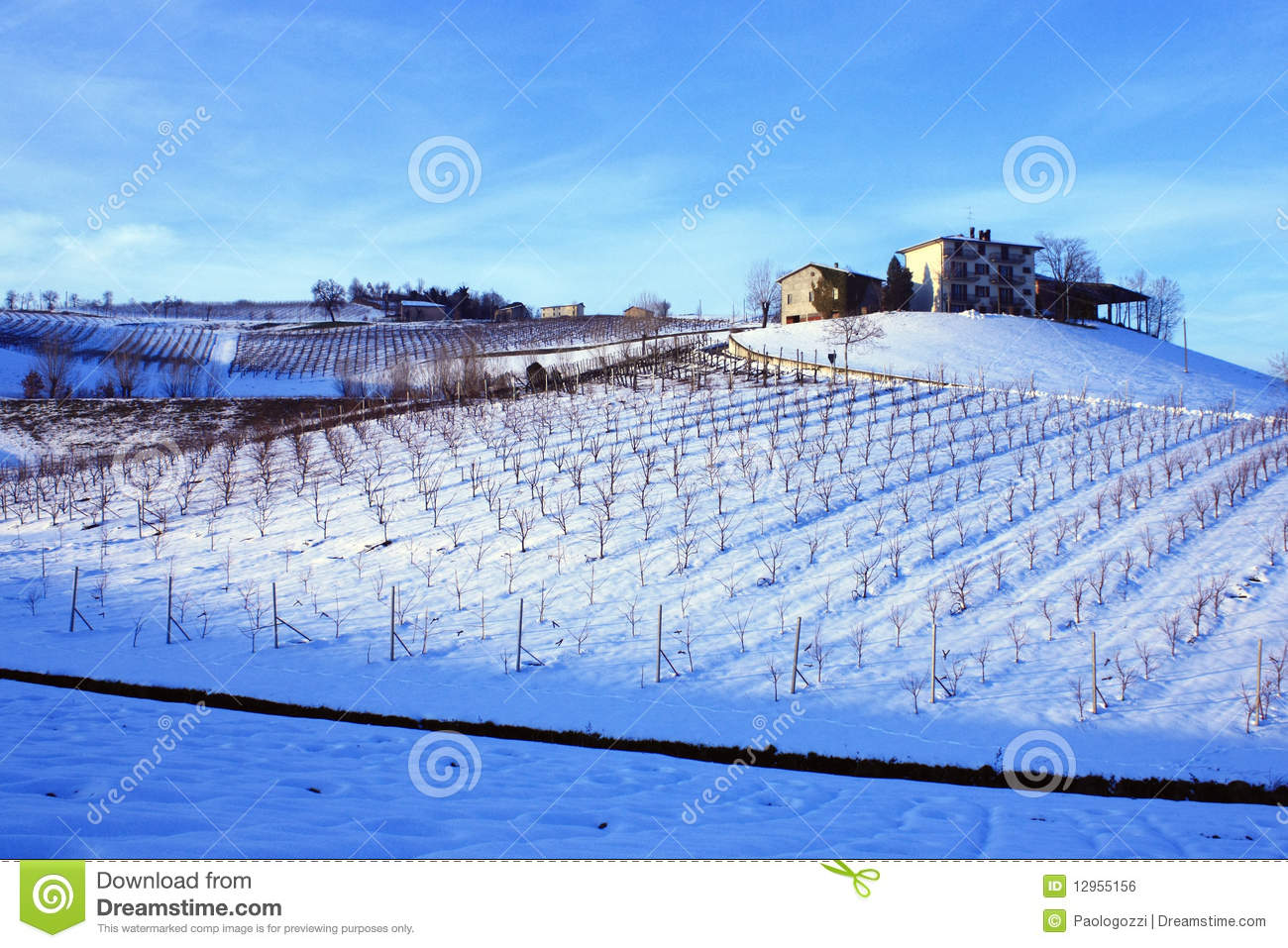 Farm on the top of the wineyard