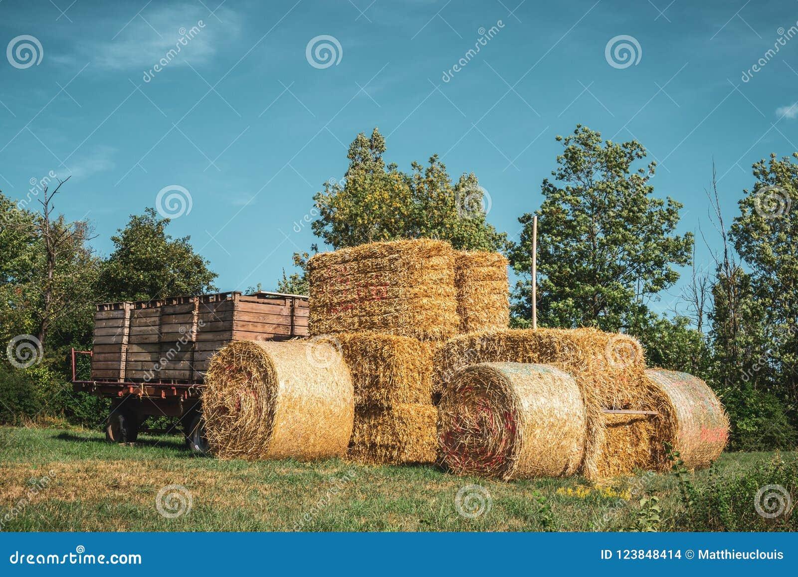 Farm tractor made of haystacks