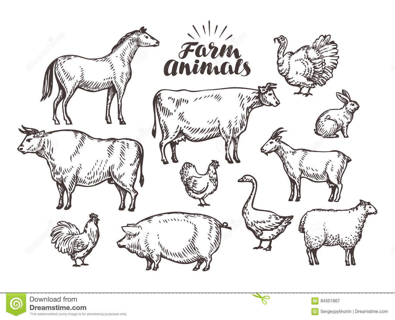 farm vector sketch collection animals such as horse cow bull