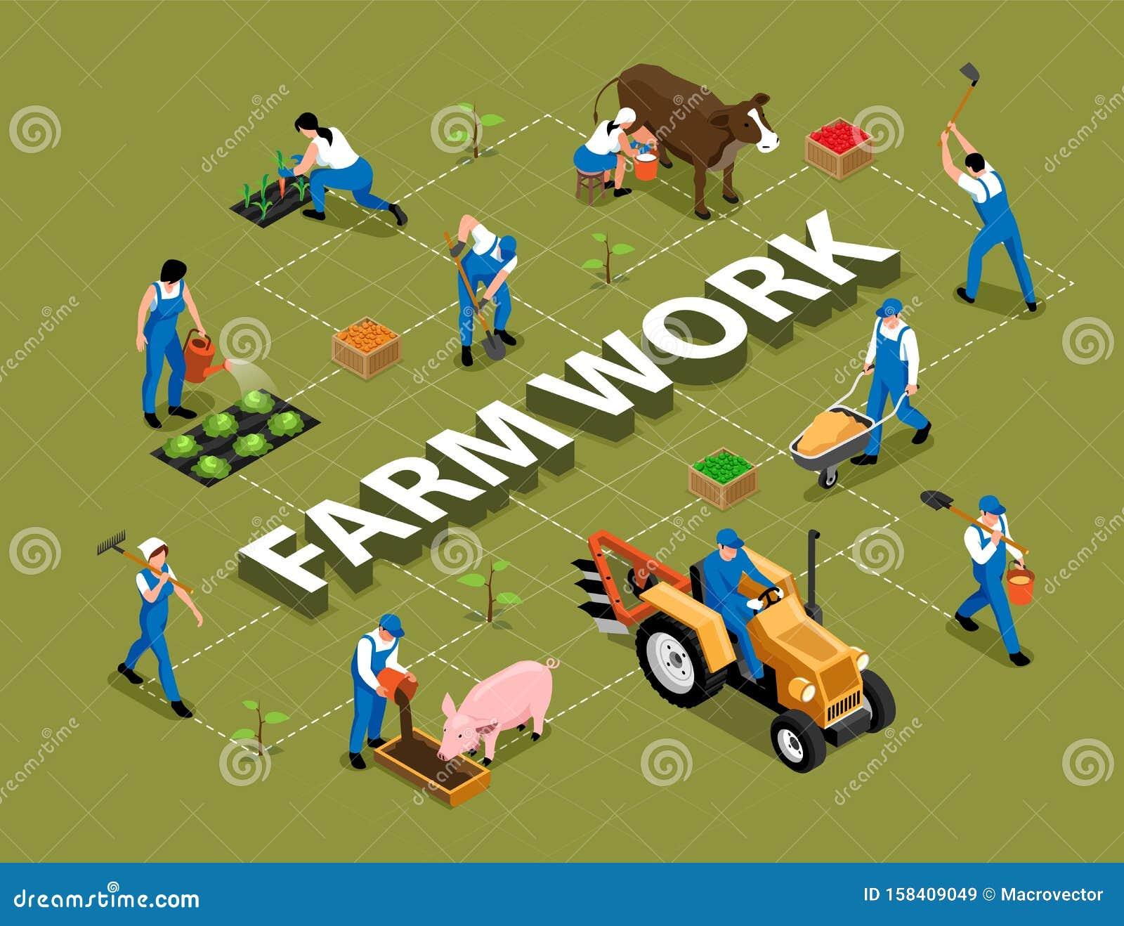 Farm Work Isometric Flowchart