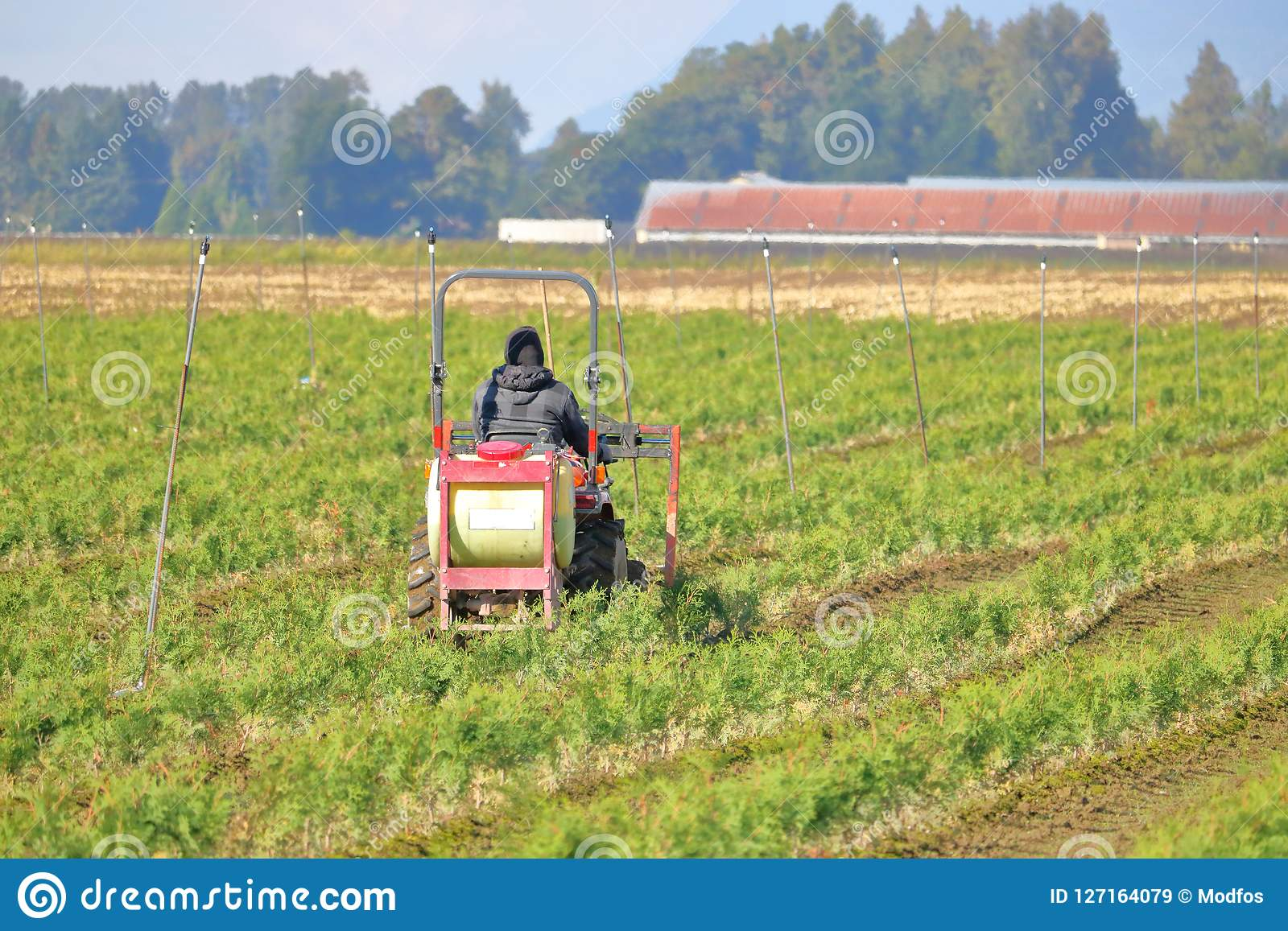 Farm Worker Spraying Chemicals Editorial Stock Image - Image of