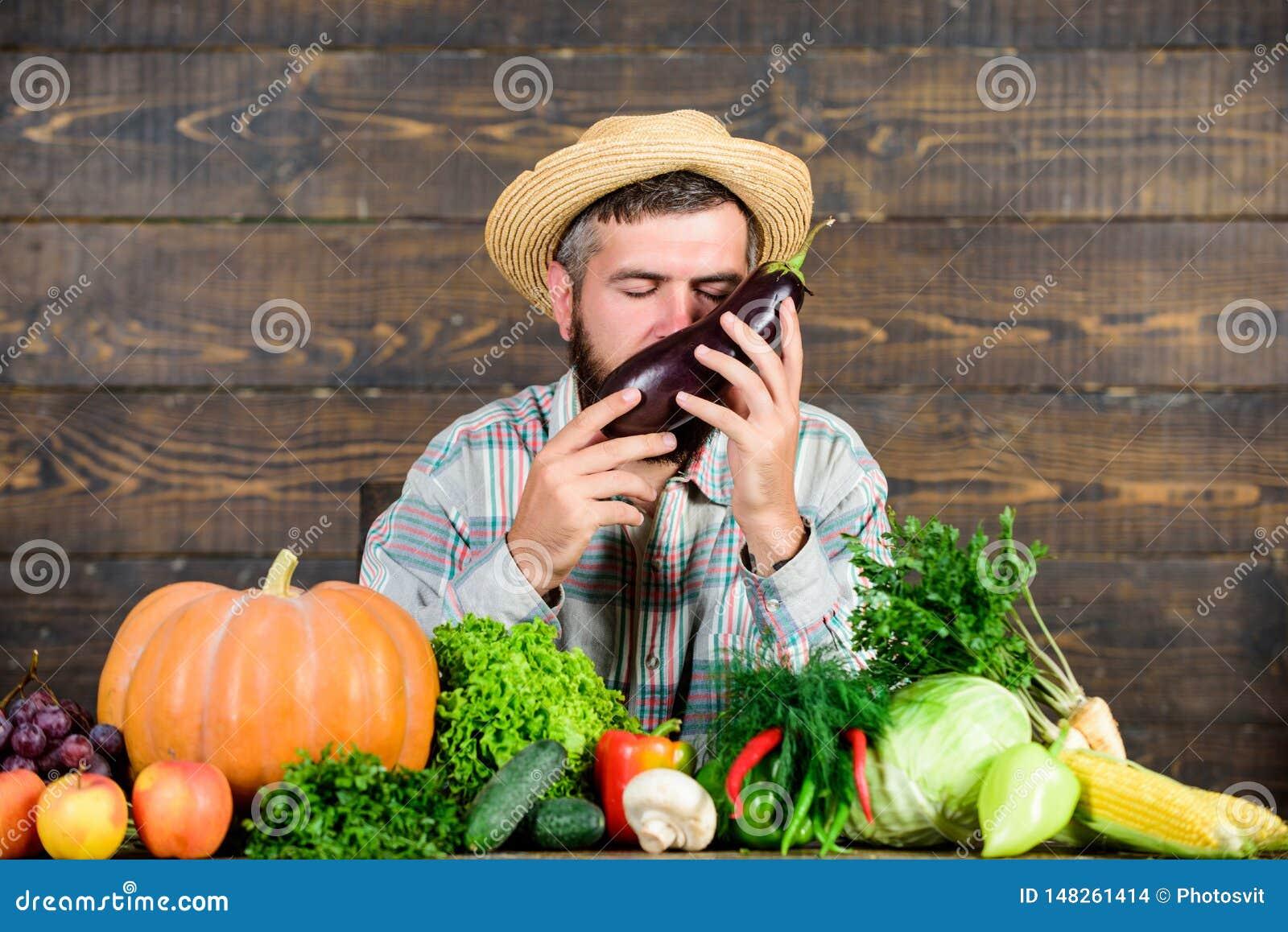 Farmer με τα οργανικά homegrown λαχανικά Αυξηθείτε τις οργανικές συγκομιδές Κοινοτικοί κήποι και αγροκτήματα Homegrown οργανική τ