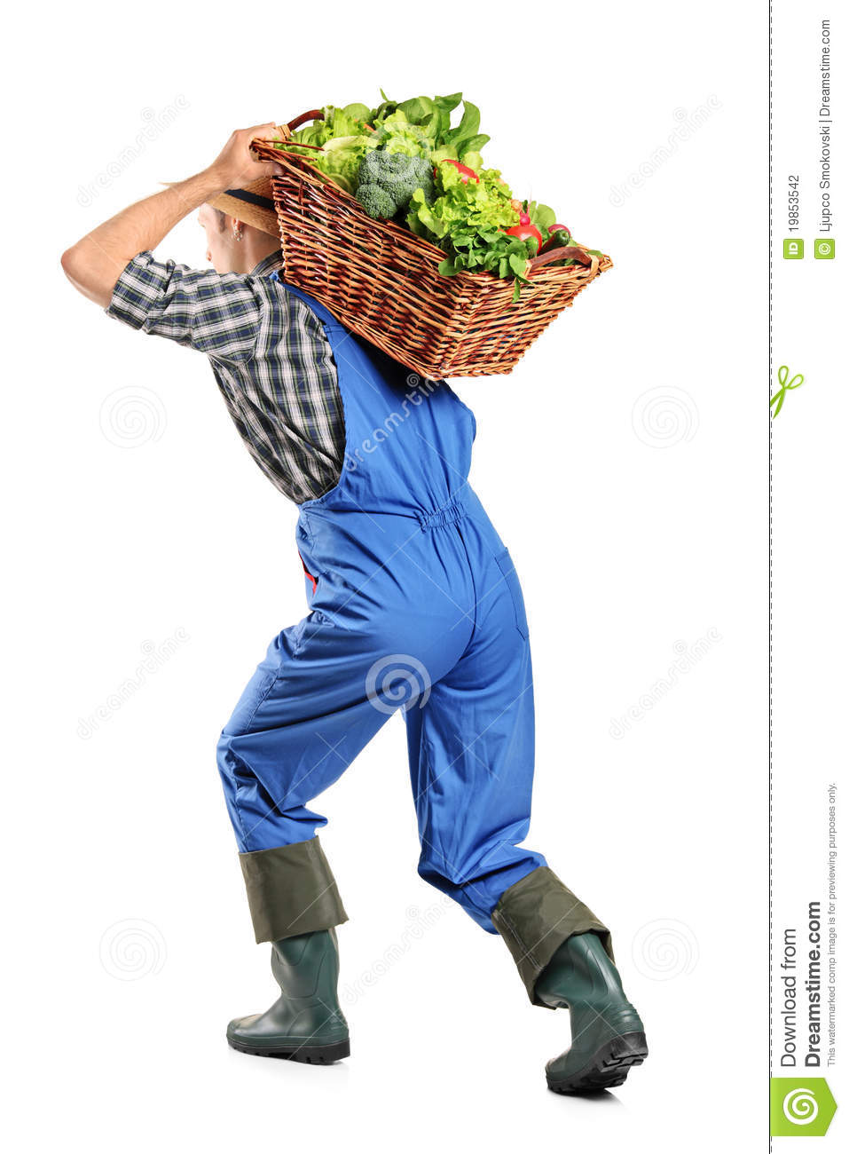 Farmer Carrying A Basket Of Vegetables On His Back Stock