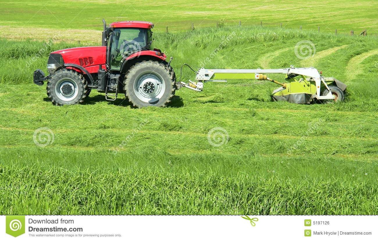 Hay Farmer Tractor Cartoon : Farmer farming tractor hay stock photo image of farm