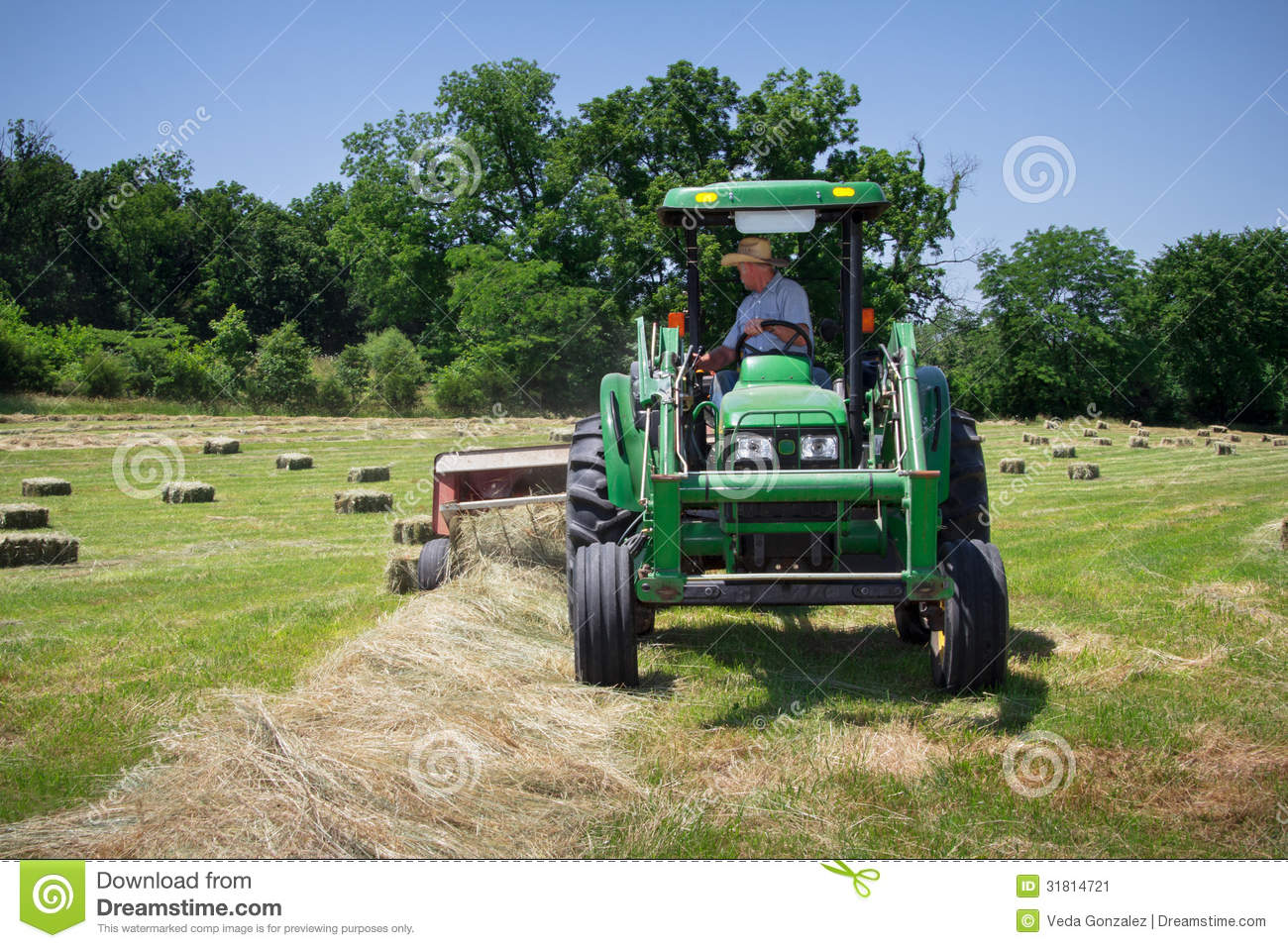Hay Farmer Tractor Cartoon : Farmer haying field stock image