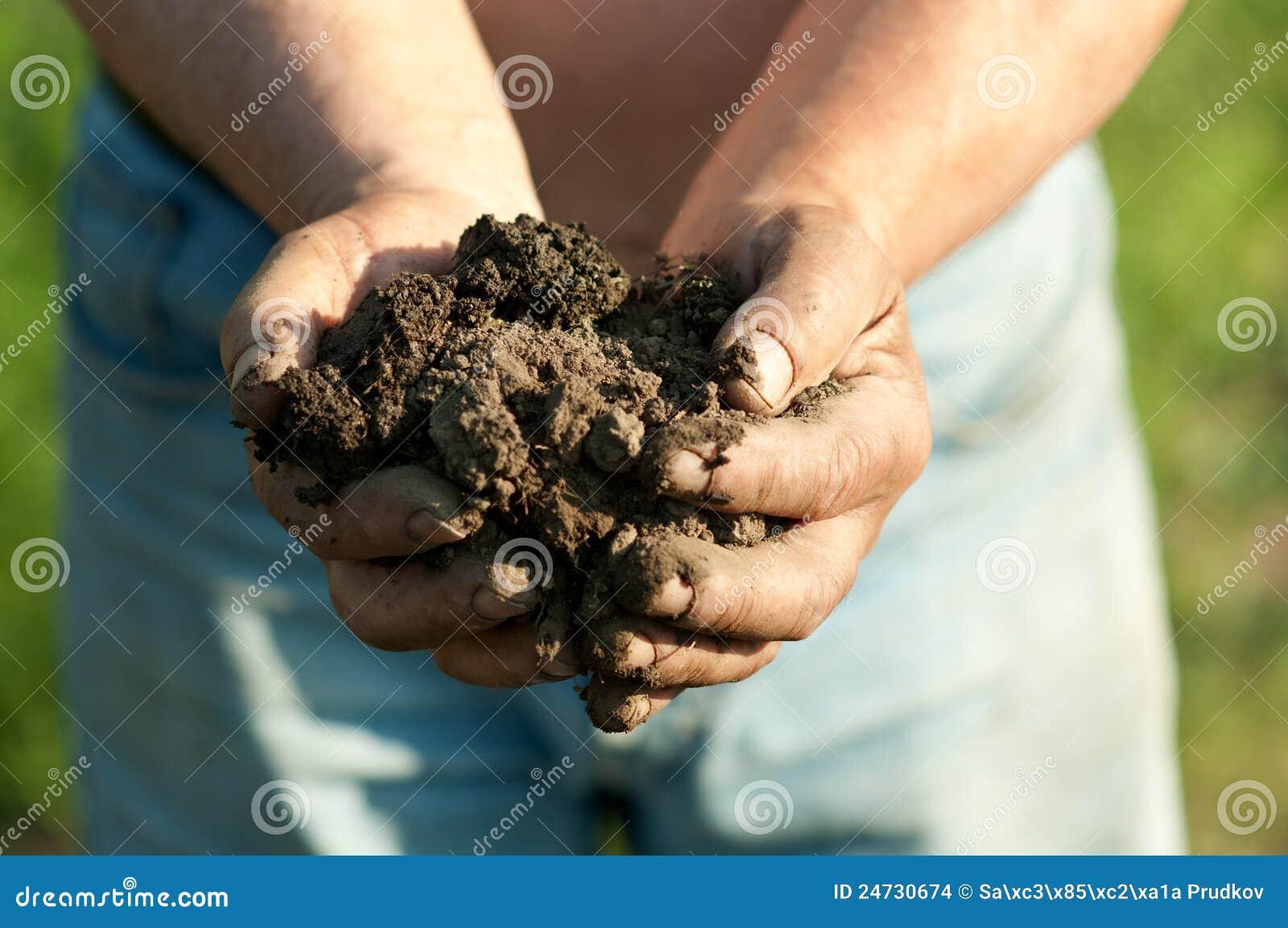 Farmer holding lump of wet soil in his hands