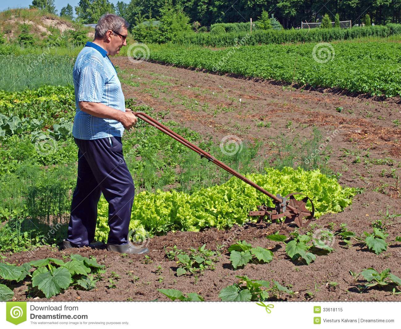 Farmer Pushing Tiller 3 Stock Image Image Of Metal Farmer 33618115