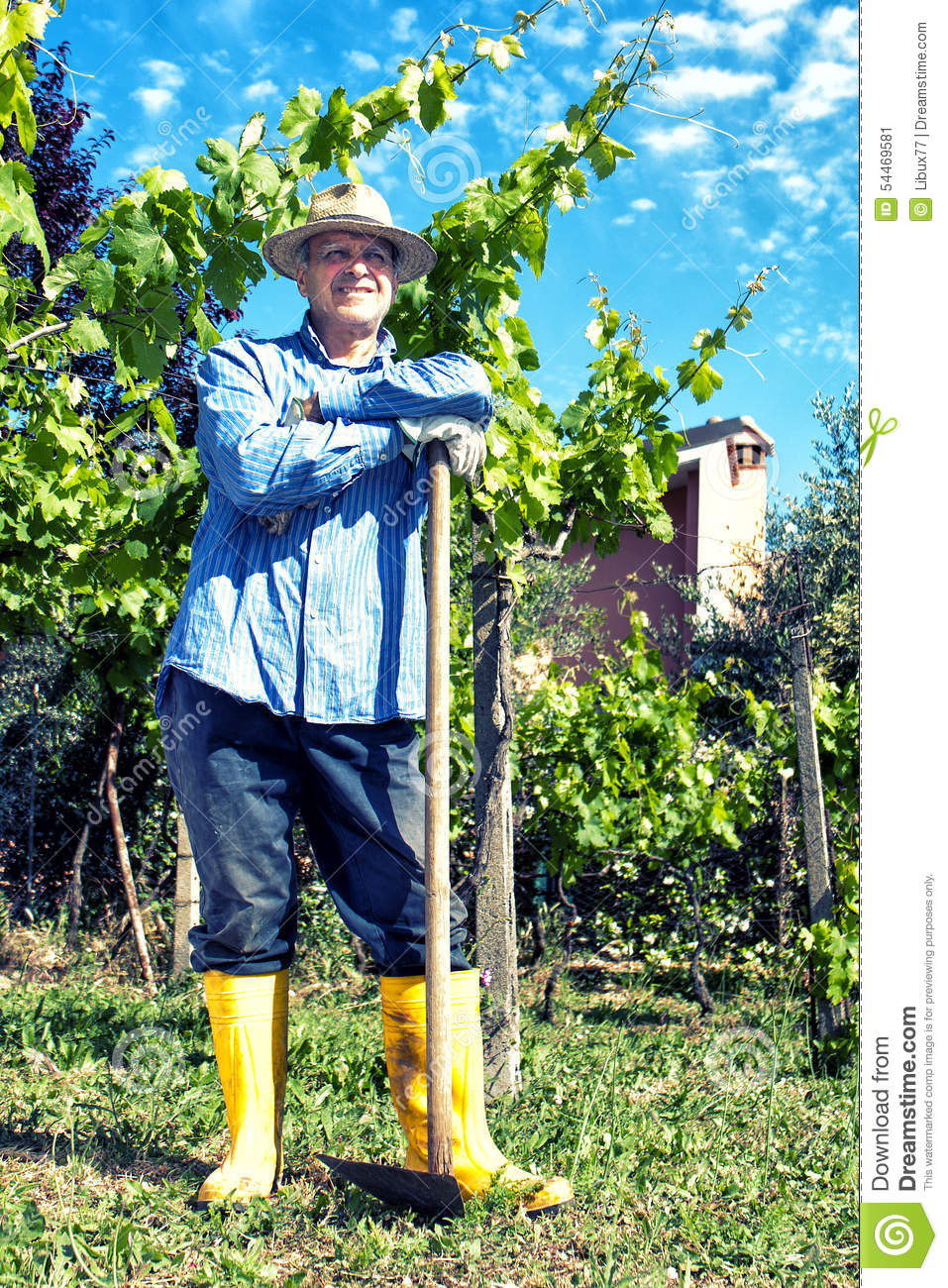 Farmer Straw Hat Spade Portrait Break Vineyard