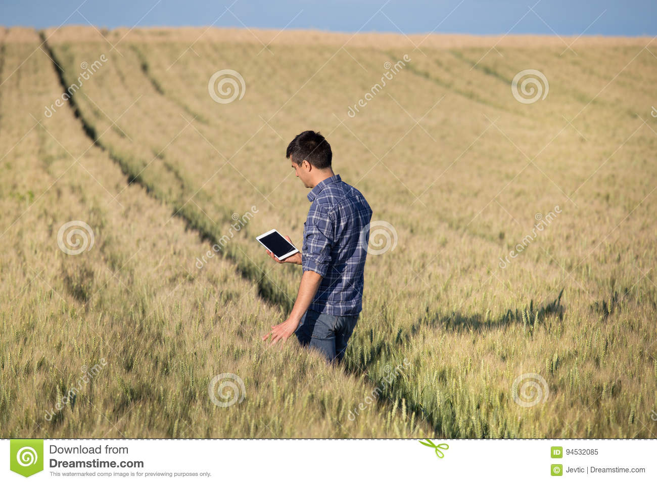 Farmer with tablet in field