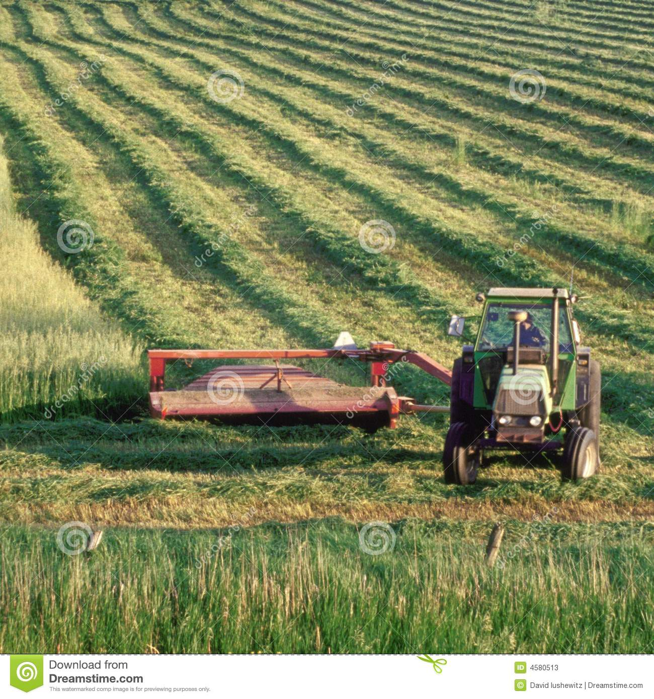 Farmer On Tractor : Farmer on tractor in field stock image of crops