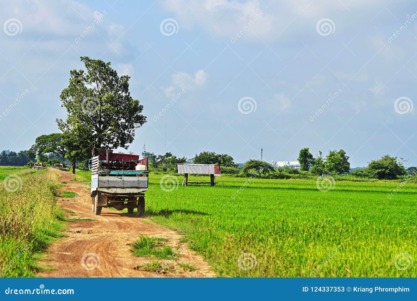 Farmer Transport