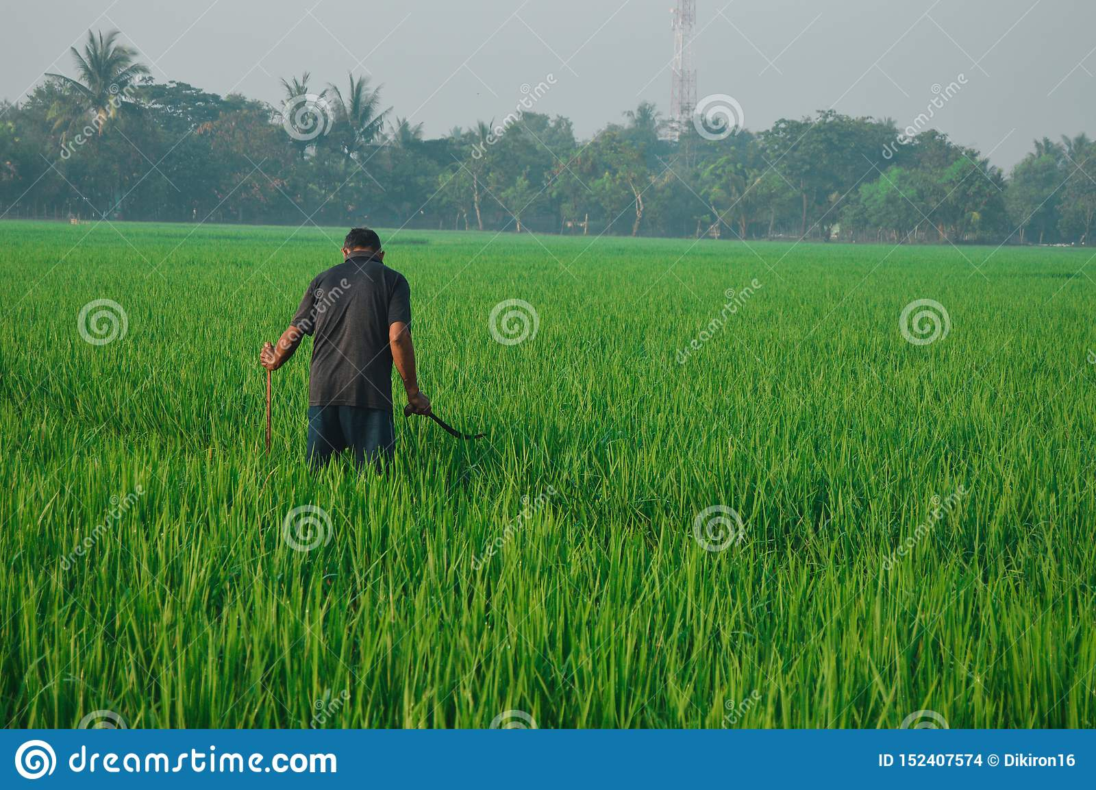 A farmer who is working