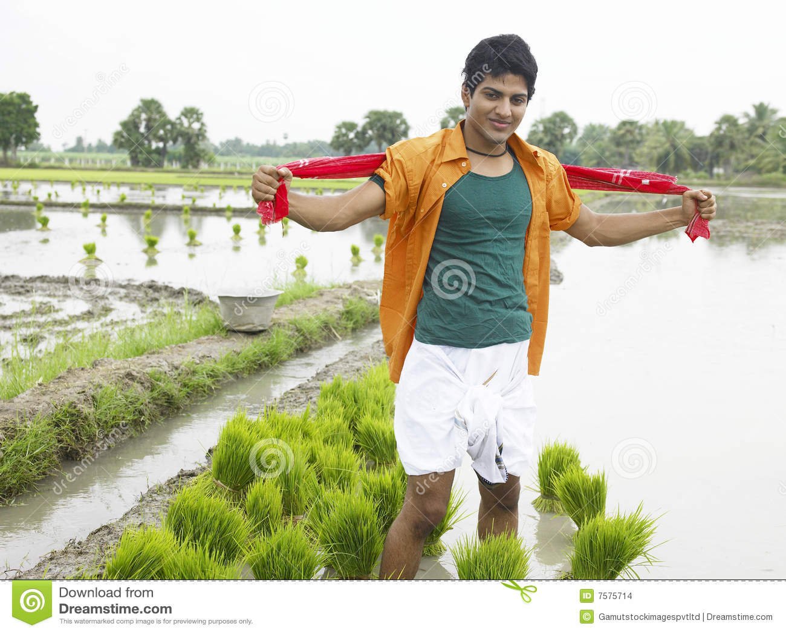 Indian farmer working ...