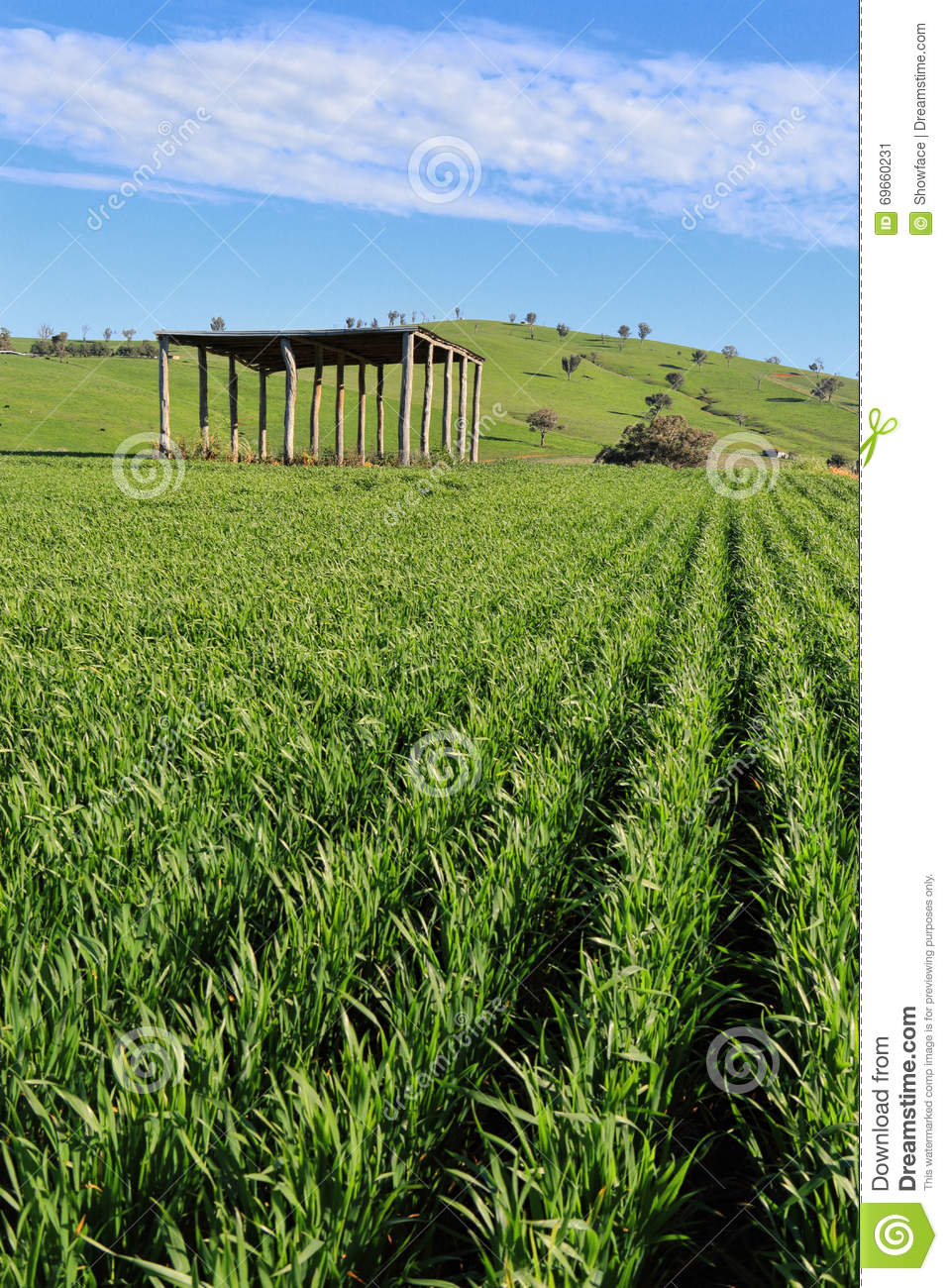 Farmers Crops Agriculure Stock Photo