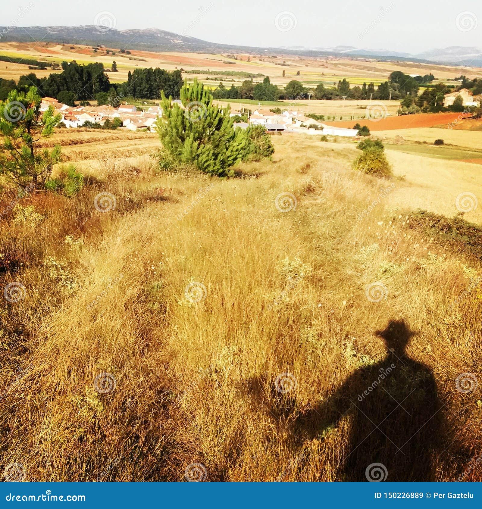 Farmfields em Micieces de Ojeda, Espanha