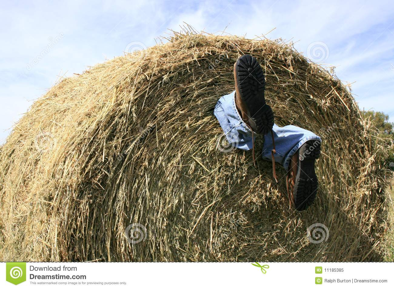 Farming Accident Royalty Free Stock Photo - Image: 11185385