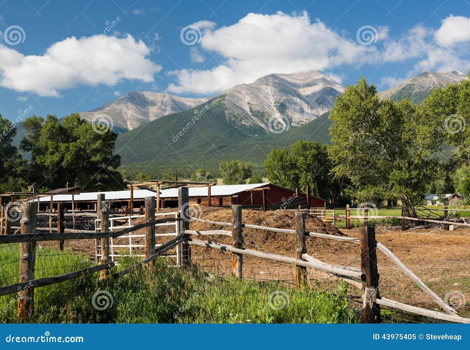 Farmyard i stajenka Mt Princeton CO
