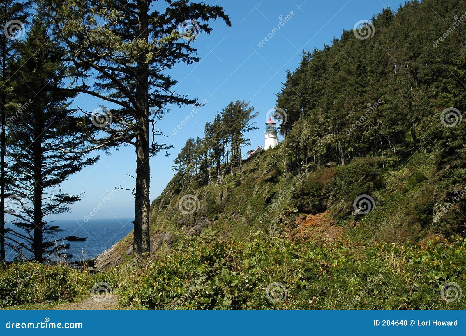 Download Faro capo di Heceta fotografia stock. Immagine di spiaggia - 204640