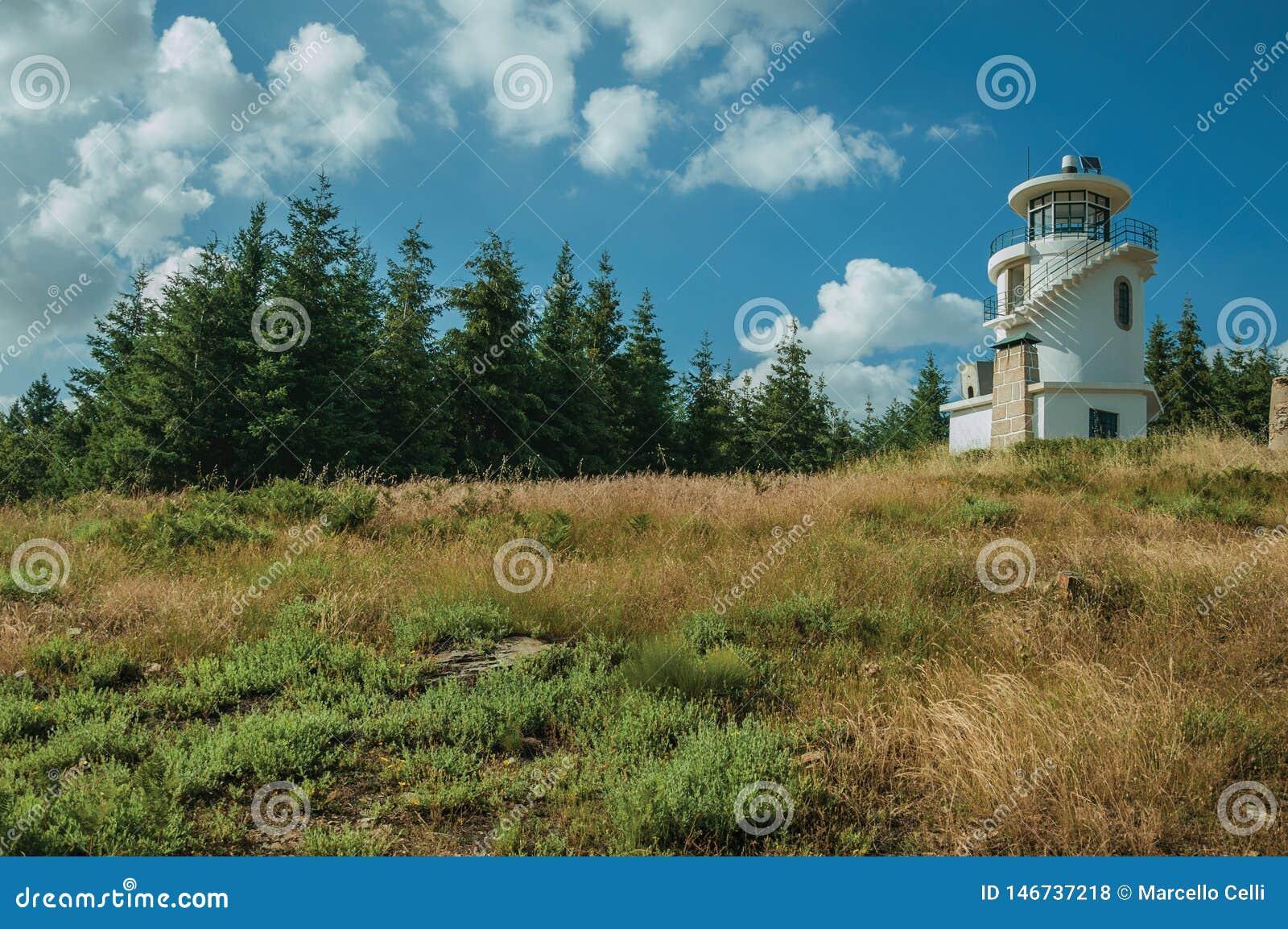 Faro encima de la colina cubierta por la hierba y los árboles