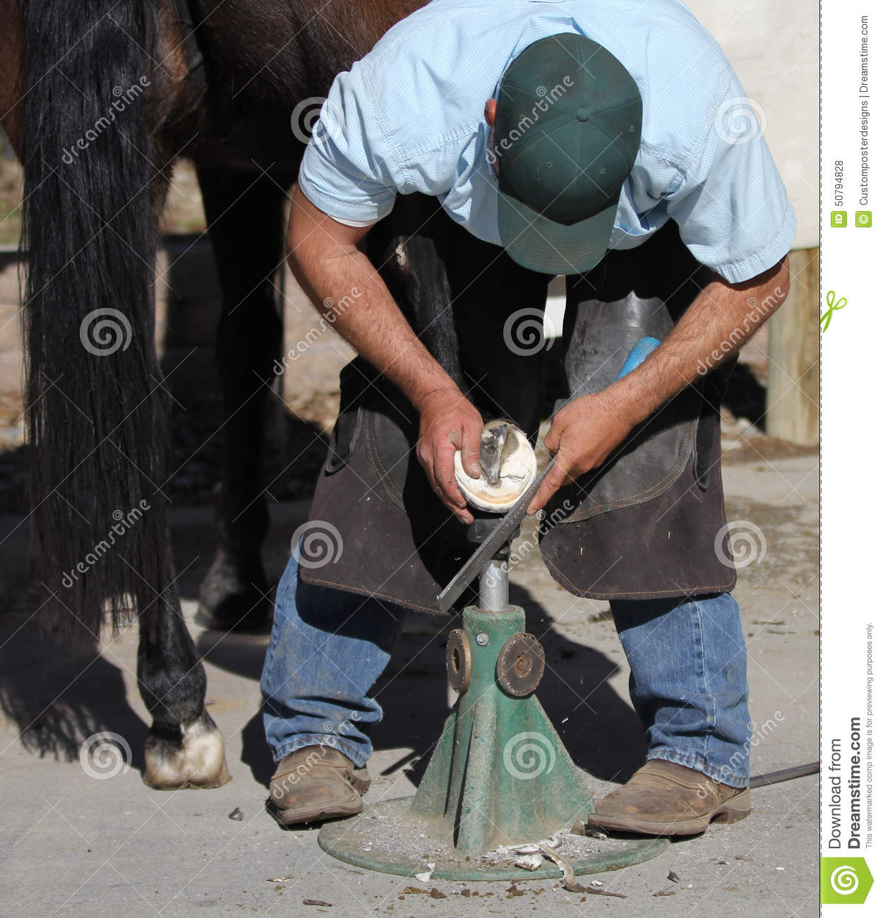 Download A Farrier Trimming A Horse Hoof. Stock Photo - Image of farm, health: 50794828