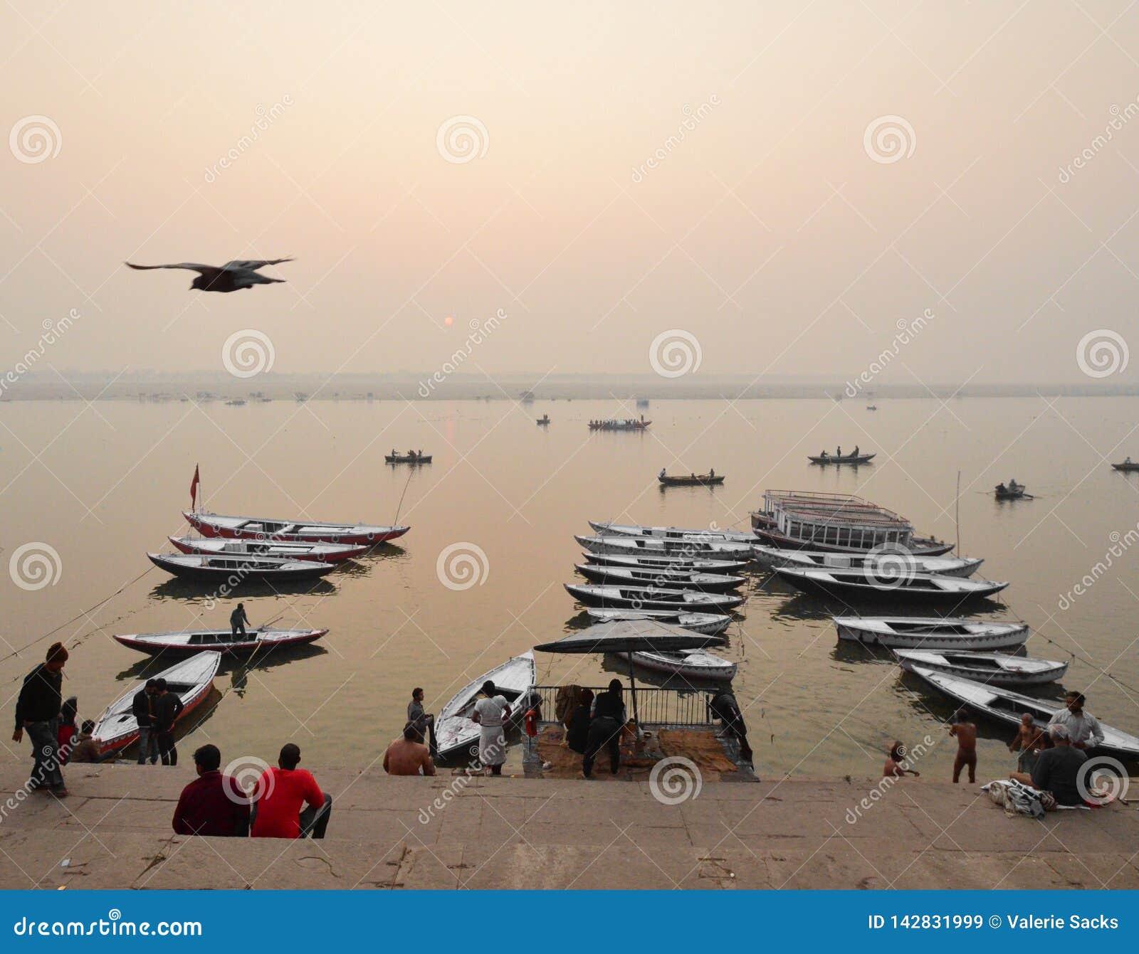 Fartygen av Varanasi med fågeln som flyger fast utgift