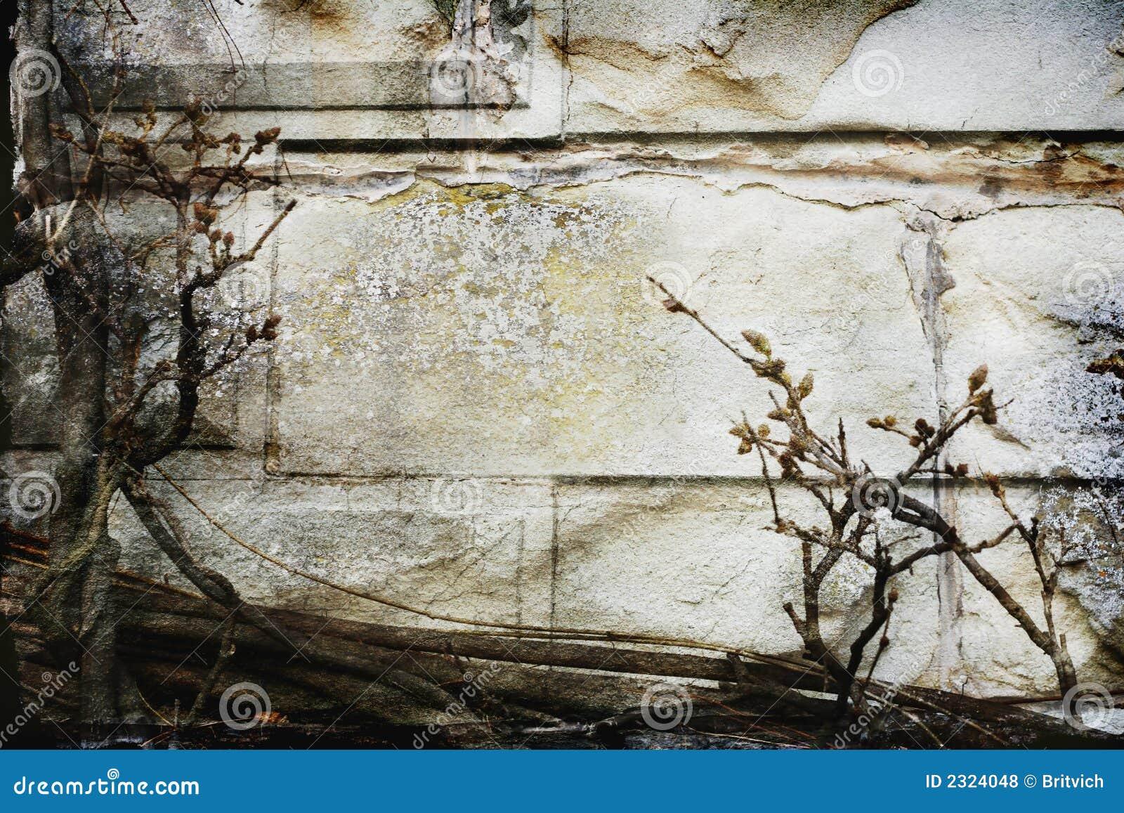 Fasade velho da parede