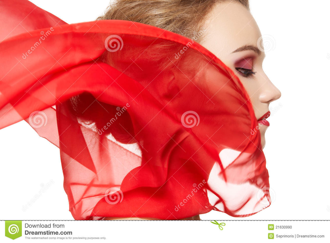 Fashion Accessories. Model With Silk Scarf, Makeup Stock Photo - Image ...