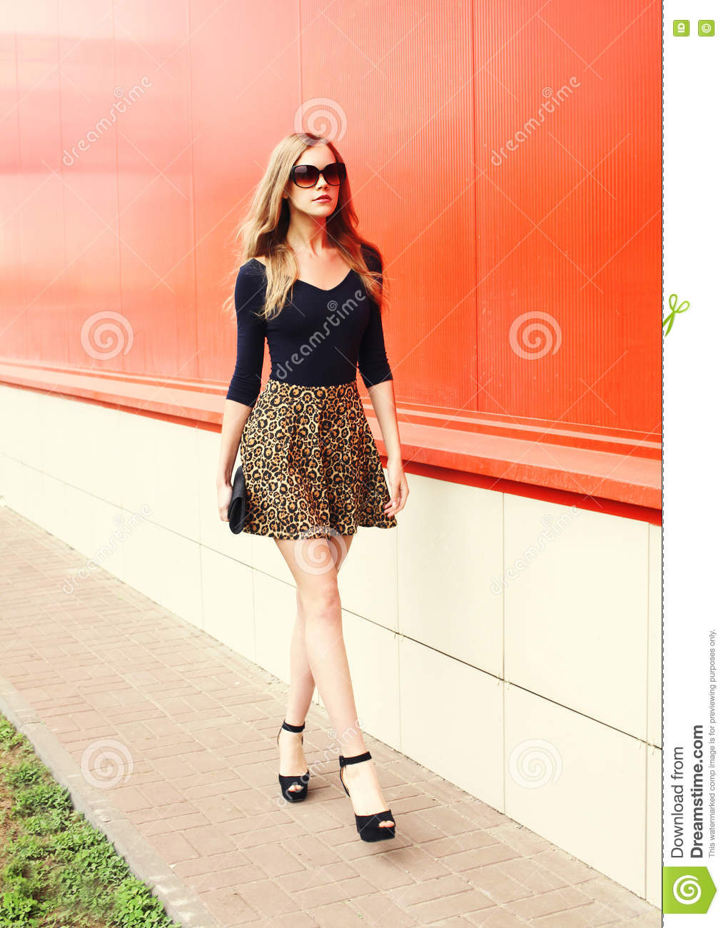 Fashion Beautiful Young Woman In Leopard Skirt With ...