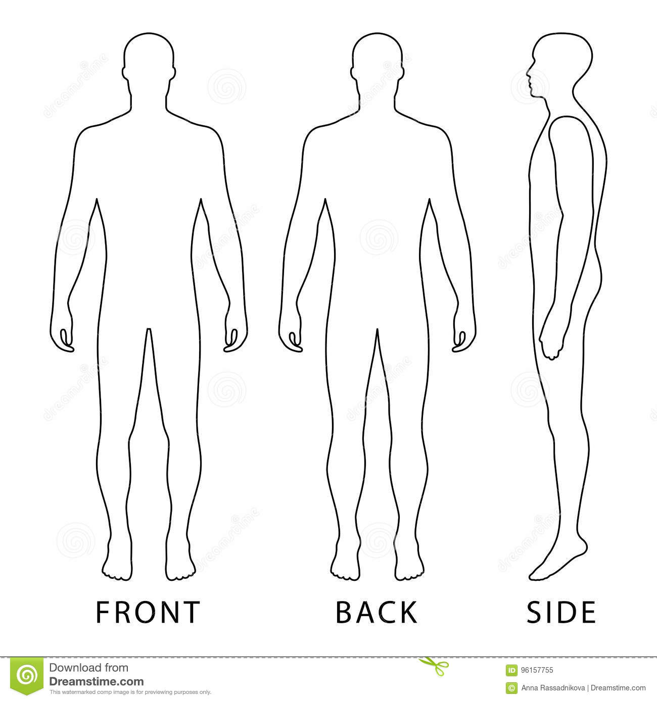 picture about Printable Outline of Human Body Front and Back known as Model gentleman determine inventory vector. Case in point of finger
