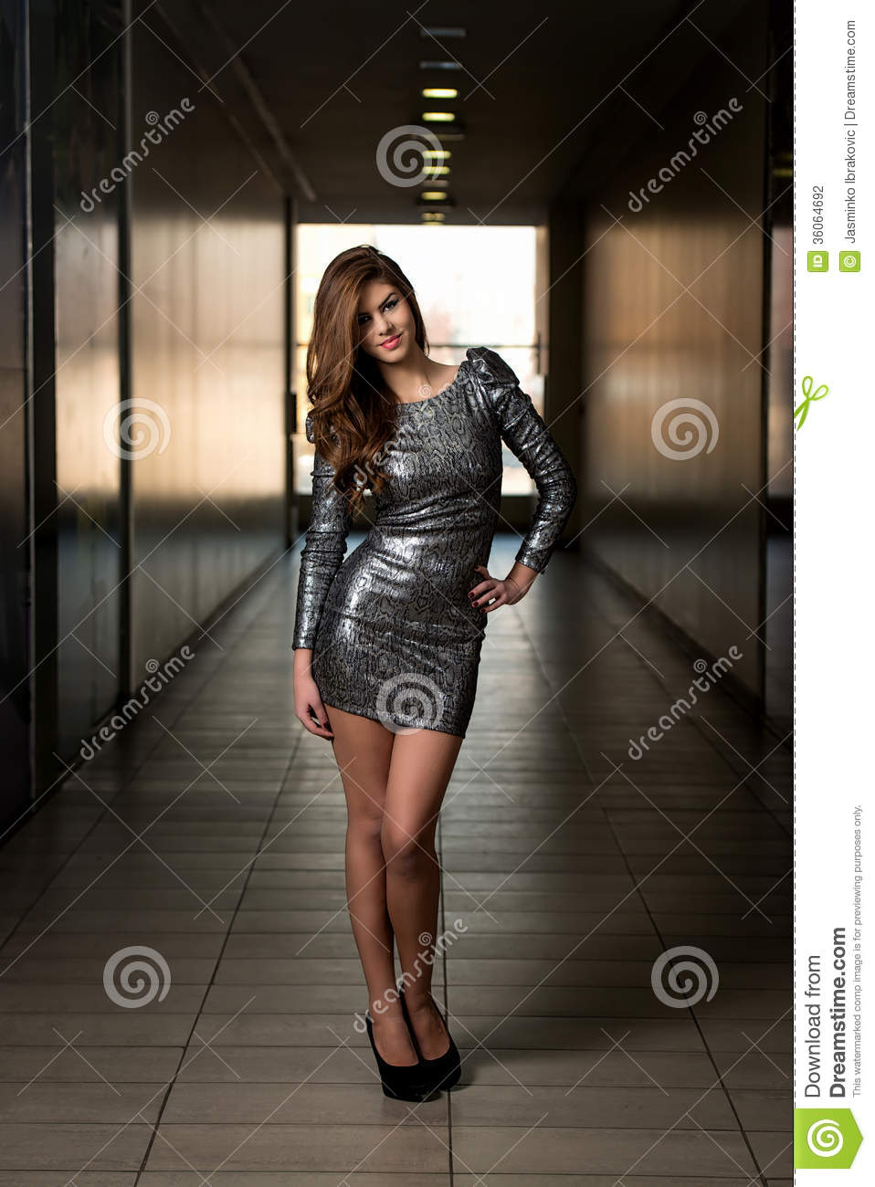 fashion model in silver dress stock photography image. Black Bedroom Furniture Sets. Home Design Ideas