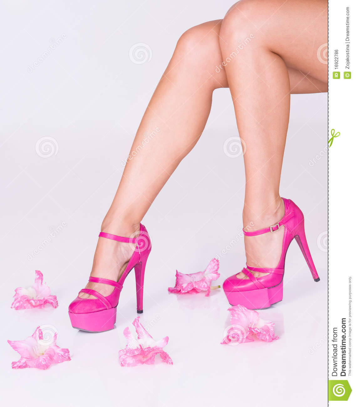Fashion Pink High Heels And Flowers Stock Photo Image Of Skin