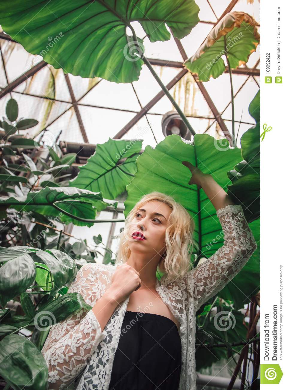 4298ed6e7d728 Fashion portrait of young female model wearing white lace cardigan and  black top standing under the exotic leaf holding it with one hand at the  greenhouse, ...