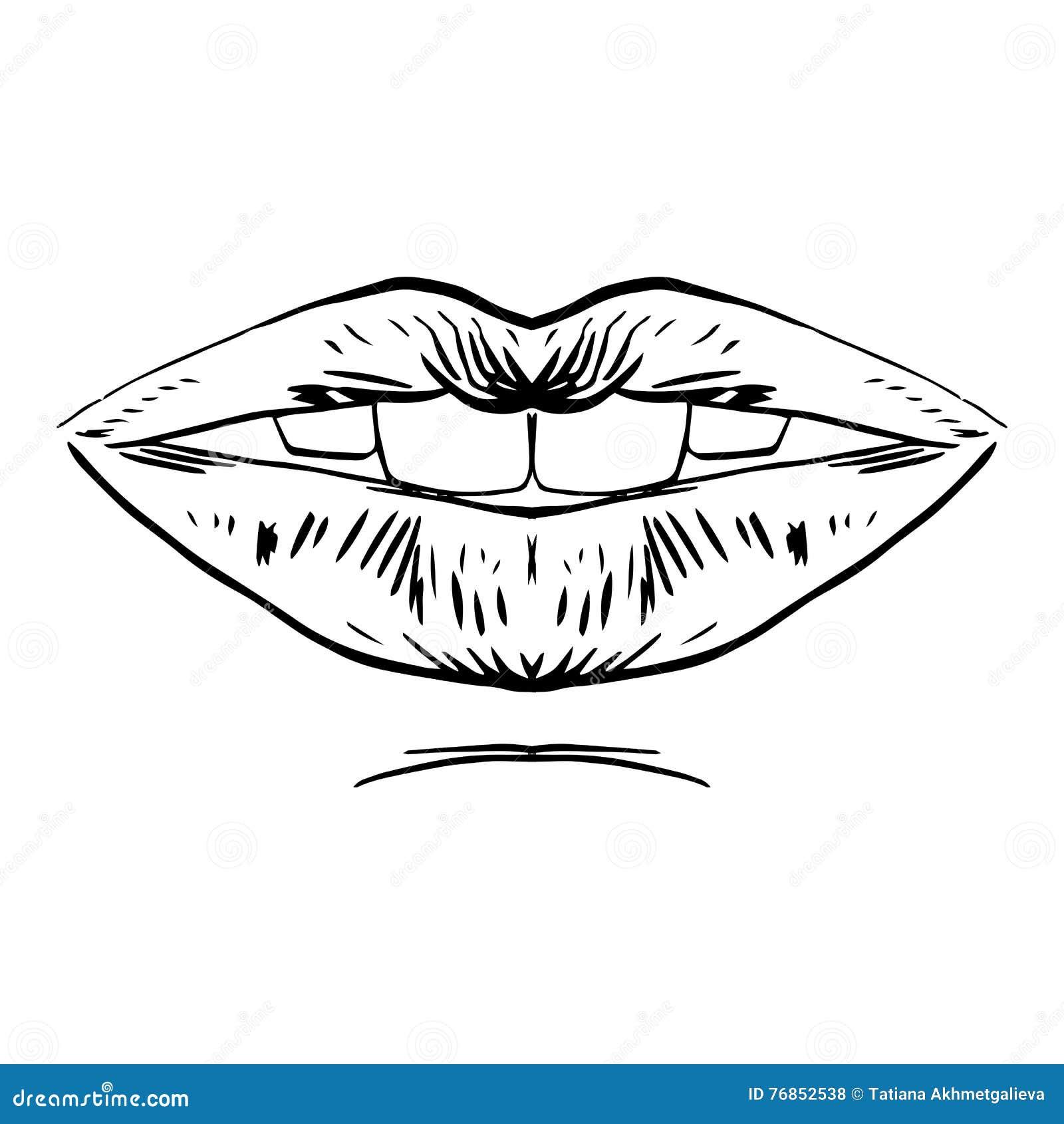 fashion vector hand drawn female lips stock vector illustration of