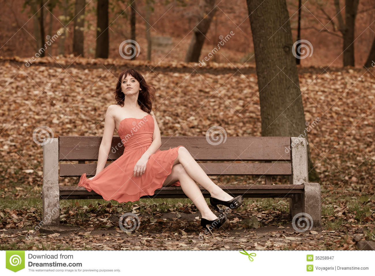 ... In Park On Bench Royalty Free Stock Photography - Image: 35258947
