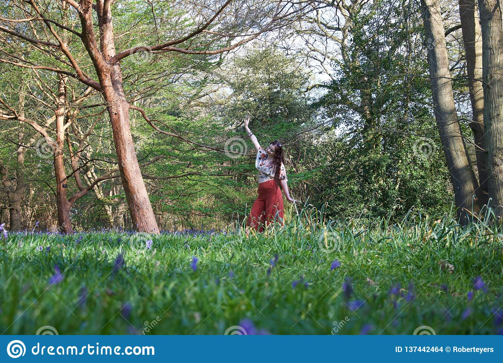 Fashionable lady posing in an English wood with bluebells and trees